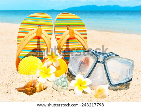 Seashells and diving mask on the sand. - stock photo