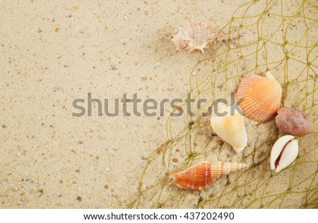 Seashells and green fishing net on sand background