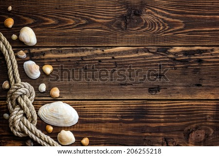 Seashells border on wood. Marine background - stock photo