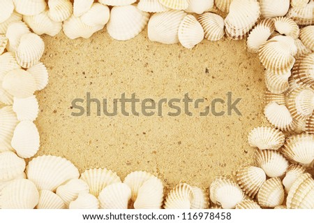 Seashells frame, on sand background