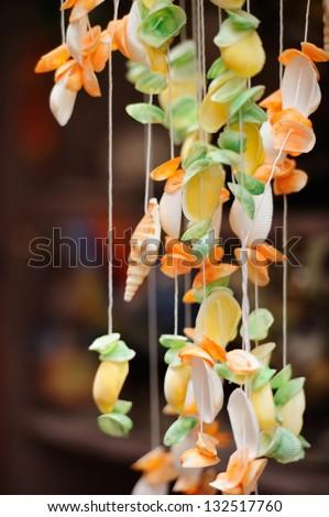 Seashells on dark background on tropical resort - stock photo