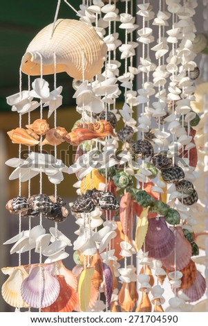 Seashells on thread background on tropical resort - stock photo
