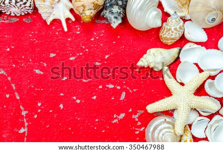 Seashells on wood painted red background.