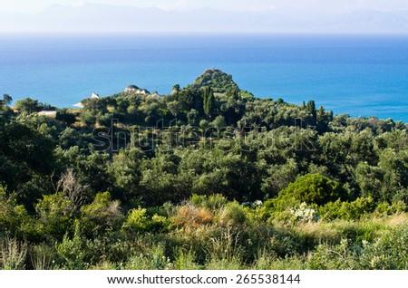 Seashore on Corfu island in Greece - stock photo