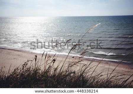 Seashore Through bent - stock photo