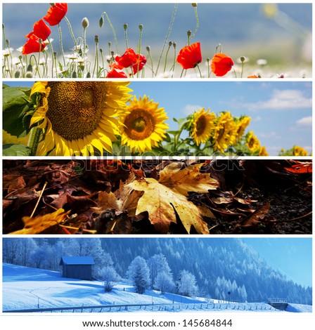 season collage - stock photo