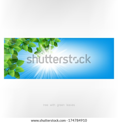 Season tree with green leaves. Green tree on blue background. Spring tree with green leaves. Banner - stock photo