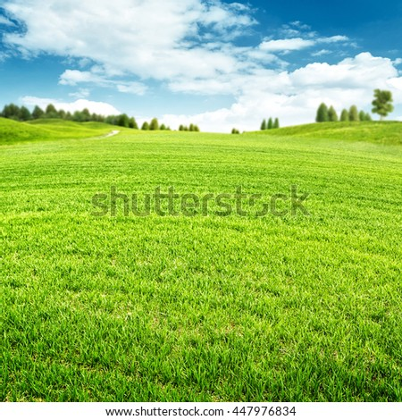 Seasonal backgrounds. Beauty summer field with green grass on the hills - stock photo