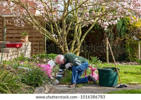 seasonal garden work at home with grandfather and granddaughter pulling weeds