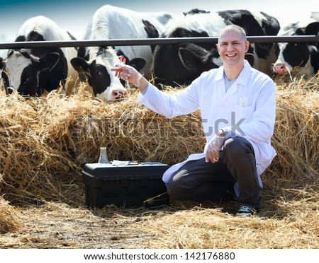 Seated man with test tubes in hand on cow farm - stock photo