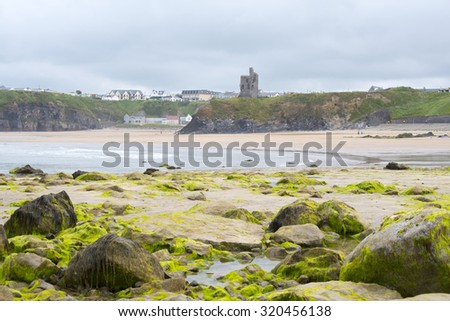 seaweed covered rocks with castle and cliffs on ballybunion beach in county kerry ireland - stock photo