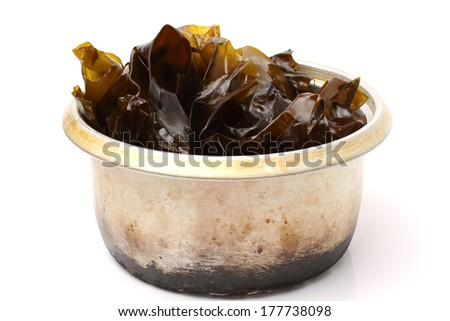 seaweed on white background