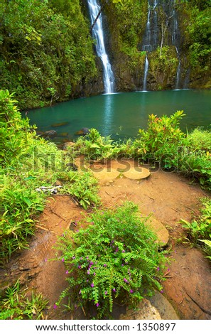 Secret waterfall and flowers on Kauai on Kauai Hawaii. More with keyword Series001. - stock photo