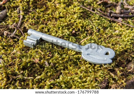 secrets - old key lying on the moss in the forest