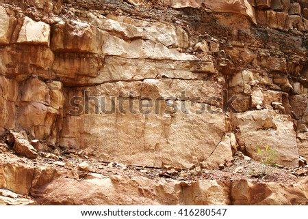 Sedimentary rock or sandstone consisting of sand or quartz grains cemented together, typically red, yellow, or brown in color.