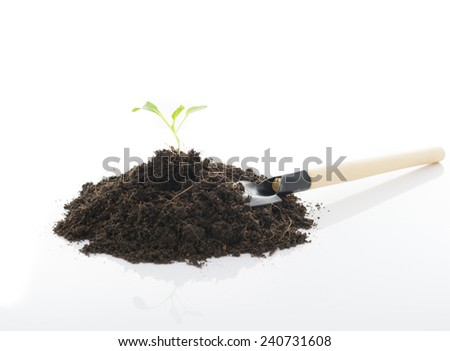 seedling growing and Shovel on white background - stock photo