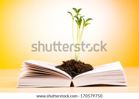 Seedlings growing from book in knowledge concept - stock photo
