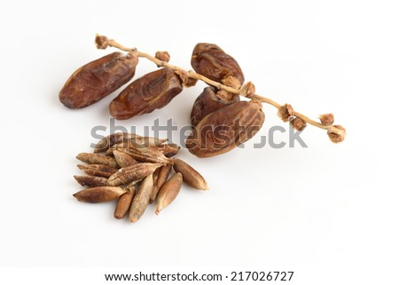 Seeds and Date Palm (Phoenix dactylifera).