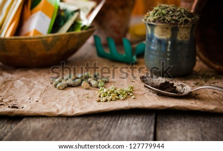 Seeds for planting in spring, seed packets in background. - stock photo