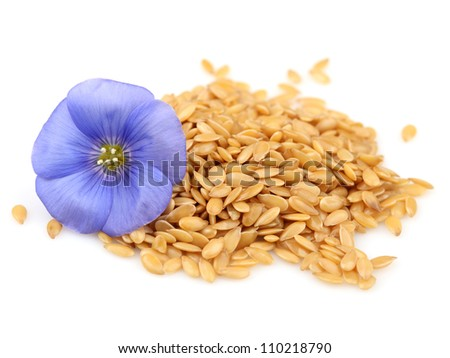 Seeds of flax with flower - stock photo