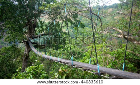 select focus, Suspension bridges from one tree to the destination, southern Laos, a zipline in bolaven plateau laos - stock photo