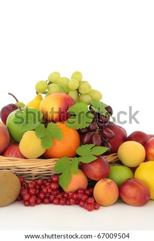 Selection of citrus, berry and  tropical fruit in a basket with hop leaf sprigs. isolated over white background.