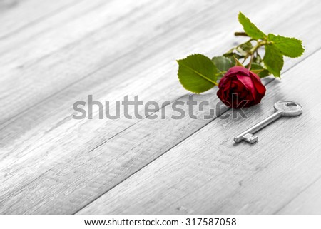 Selective colour of the rose in a greyscale image in a conceptual image of romance, love, proposal and devotion with beautiful blooming red rose and key on wooden table with copy space. - stock photo