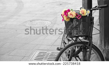 Selective desaturation of an old bicycle with flowers in the basket. Alghero old town, Italy.  - stock photo