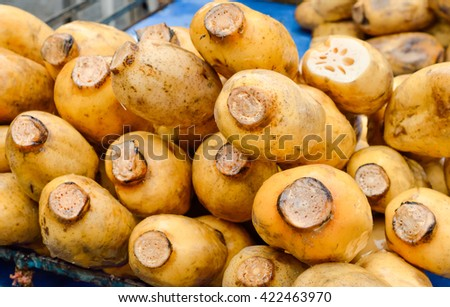 Selective focus of lotus roots sale at a street market in Thailand - stock photo