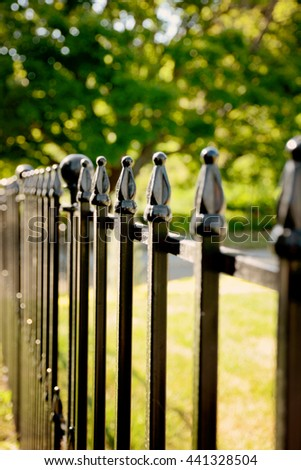 Selective focus on an ornamental fence finial with very shallow depth of field./Ornamental Fence Finials