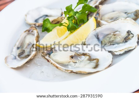 Selective focus point on fresh oysters shell with lemon - stock photo