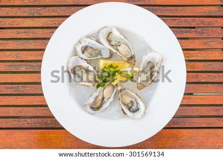 Selective focus point on fresh oysters shell with lemon - Top of view - stock photo