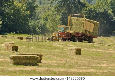 Self contained hay bale wagon picking up bales of alfalfa from a farm field