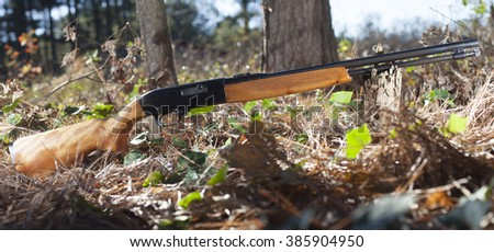 Semi automatic rimfire rifle for twenty two in the forst - stock photo