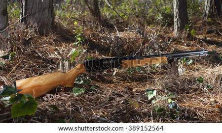 Semi automatic rimfire rifle in the forst with trees - stock photo