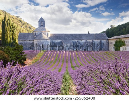 Senanque Abbey in Vaucluse, Provence, France  - stock photo