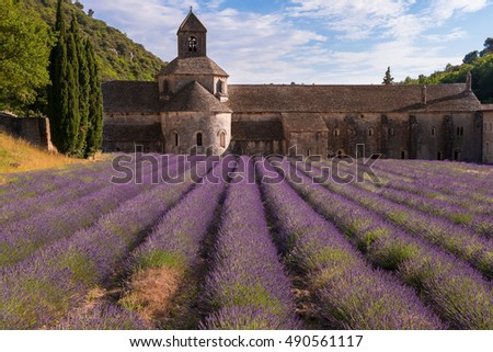 Senanque abbey with a lavender field, Provence (France)