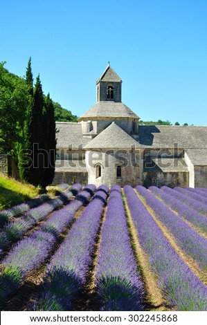 Senanque Abbey with lavender fields