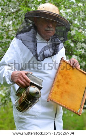 senior beekeeper making inspection in apiary in the springtime - stock photo