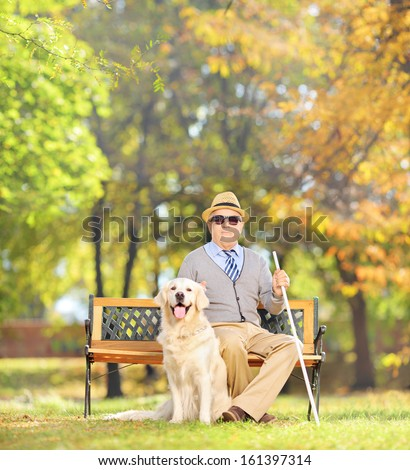 Senior blind gentleman sitting on a wooden bench with his labrador retriever dog, in a park, shot with a tilt and shift lens - stock photo