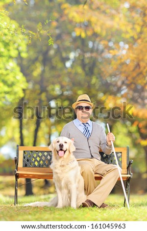 Senior blind man sitting on a wooden bench with his labrador retriever dog, in a park
