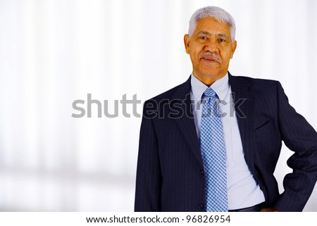 Senior business man working in his office - stock photo