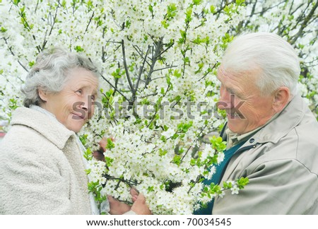 senior couple among flowering garden - stock photo