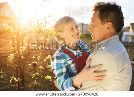 Senior couple enjoying a moment in their garden - stock photo