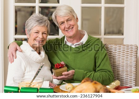 Senior couple holding a christmas present at home in the living room - stock photo