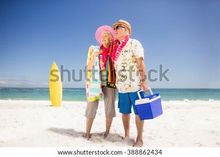 Senior couple holding icebox on the beach - stock photo