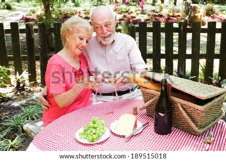 Senior couple on a romantic outdoor picnic.