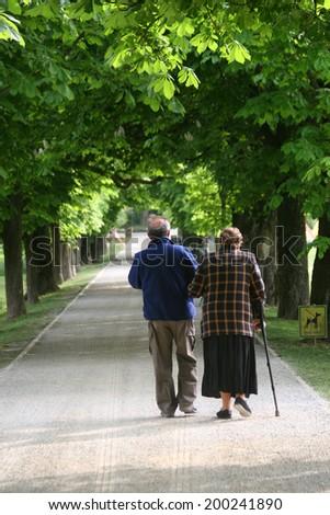 Senior couple walking in a green park - stock photo