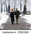 Senior couple walking in park at winter - stock photo