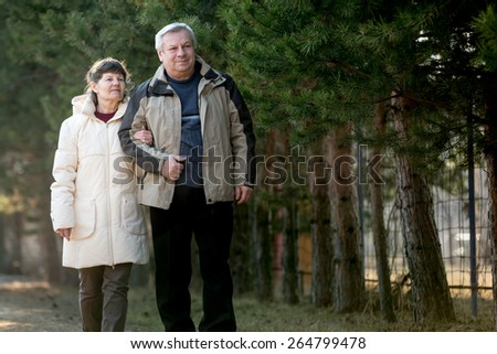 Senior couple walking together in park, copy space - stock photo